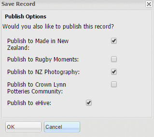 Save Record Publish Options