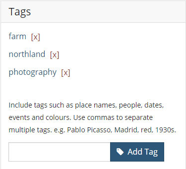 The Tag section of an object record